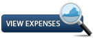 View DLS expenses